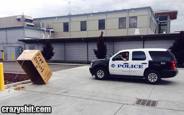 How To Catch A Cop