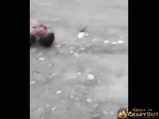 CrazyShit.com | Teen Dies After Lynching