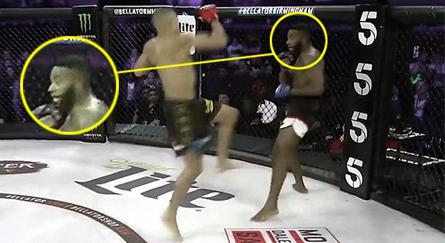 THE COOLEST MMA KNOCKOUT JUST HAPPENED IN BELLATOR