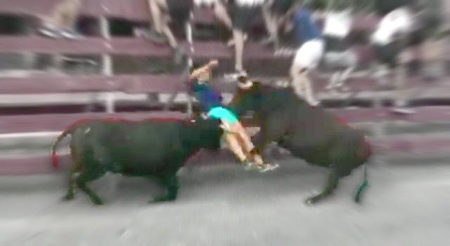 ANIMALS FUCKING HATE US: VOLUME 3