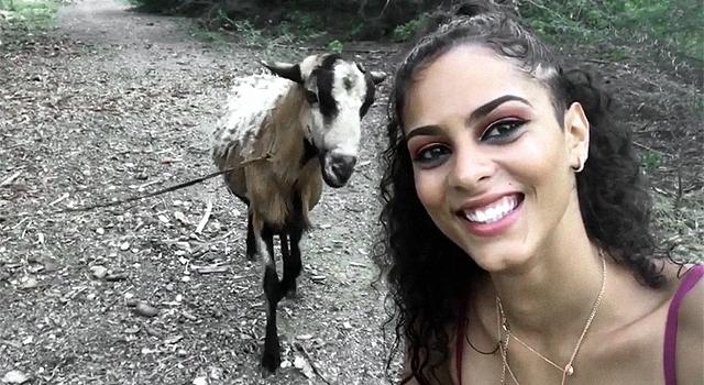 ANIMALS FUCKING HATE US: VOLUME 6